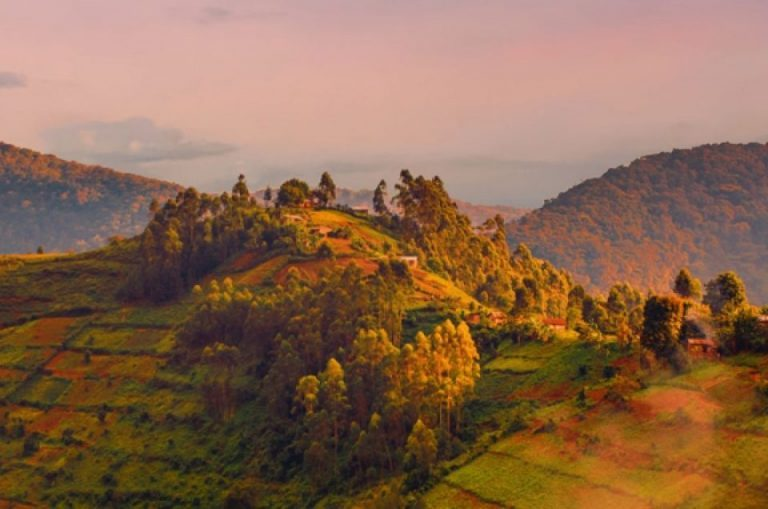 Collines en Ouganda