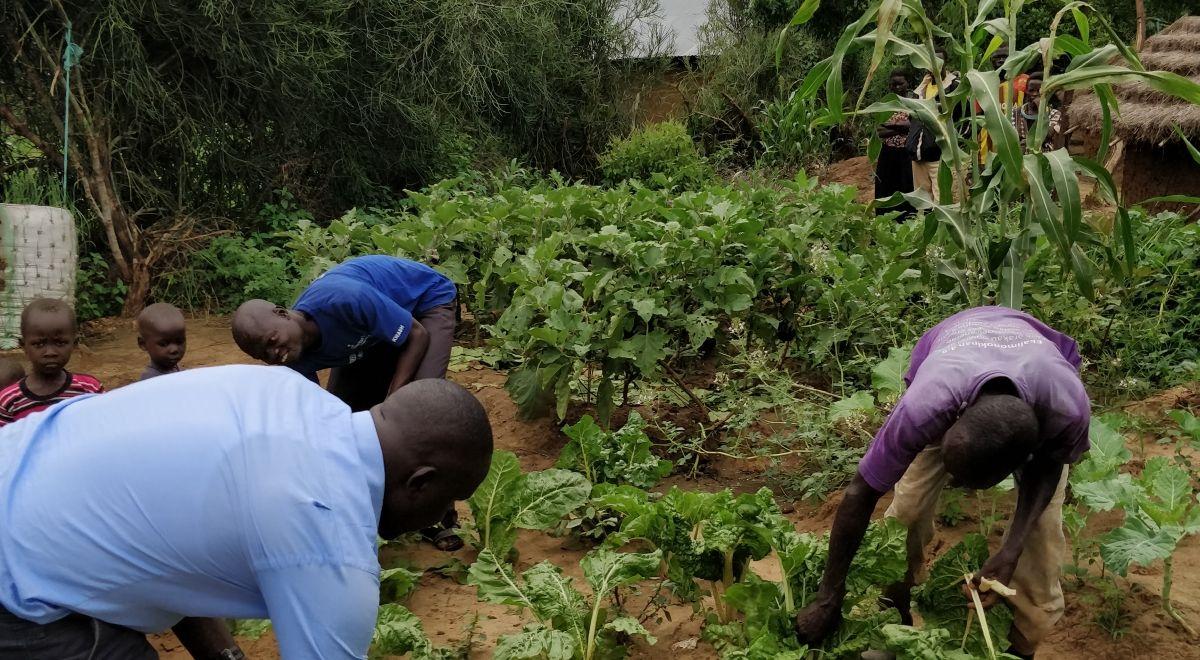 Farmers in the Karamoja region of Uganda