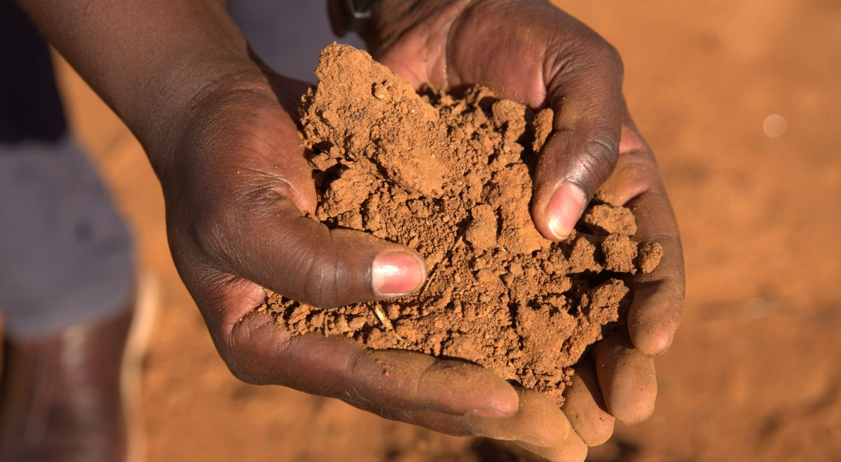 Farmers holding the soil in their hands that is used for farming
